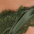 Brazilian Hannako, grün